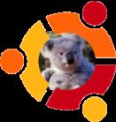 ubuntu_koala